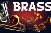 Ted Talks Lesson plan – How brass instruments work – Al Cannon