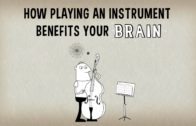 Ted Talks Lesson plan – How playing an instrument benefits your brain – Anita Collins