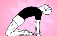 Yoga asanas videos for beginners