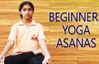 Simple Yoga Asanas for Beginners | Sitting Yoga Postures