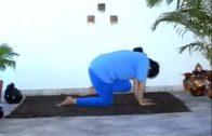 Yoga asanas telugu videos